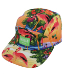 스컬스(SKULLS) Skulls flamingo 5 Panel Cap