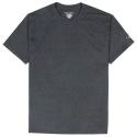 Champion Adult Short Sleeve T-Shirt (Charc heather)