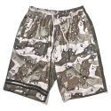 얼마이티(ALMIGHTY) CHAMPION JERSEY SHORTS multi camo