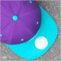 대드릭(DADLIK) EMBLEM CAP (PURPLE/MINT)