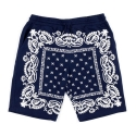 크룩스앤캐슬(CROOKS & CASTLES) Mens Knit Sweatshort - Skeletal