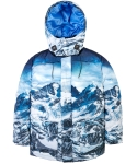 Duckdown Arctic Mountain Parka