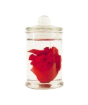 미미마끄(MIMIMAC) [EYECANDLE] Heart in jar candle Red