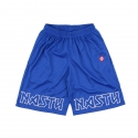 네스티팜(NASTY PALM) [NYPM] NASTY IRON JERSEY SHORTS (BLUE)