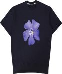 꼼파뇨(COMPAGNO) [1/2]Puple Flower MTM navy