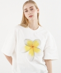 꼼파뇨(COMPAGNO) [1/2]Yellow Flower MTM white
