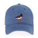 Oyster Catcher on Slate Blue