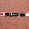 [PET] Coloring Collar (Black)