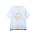 [주씨] ZOOicy 2016 S/S Chic Cat (White)