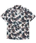 매닉() HAWAIIAN PALM TREE SHIRTS