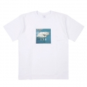 스테이블(STABLE) [스테이블] SQUARE SHARK T (White)