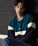 SHUTTER RAGLAN BLOCK SWEAT SHIRTS (GREEN)
