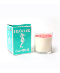 스웨디시 드림(SWEDISH DREAM) SWEDISH DREAM™ - SEAWEED CANDLE