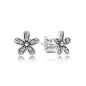 290570CZ SIVER EARING