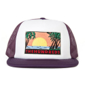 더헌드레드(THE HUNDREDS) THE HUNDREDS GLASSY CAP [3]
