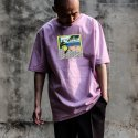 디콤파스(D.COMPAS) D.CPS CARTOON T-SHIRT(PINK)