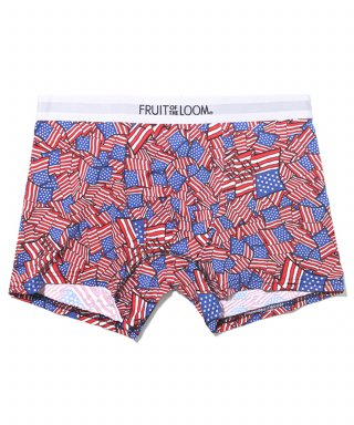 프룻오브더룸(fruitoftheloom) 80s PRINT DRAWS USA