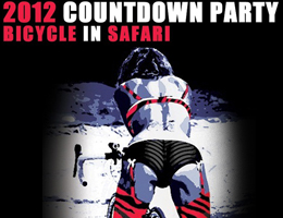 2012 countdown party